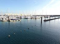 The Best of Brighton Marina
